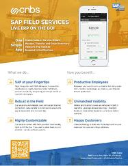 FieldServices-Flyer-Thumbnail